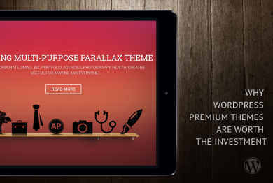 Top Reasons of Why Premium Themes Are Worth The Investment
