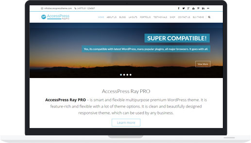 Responsive WordPress Business Theme (Premium) – AccessPress Ray Pro
