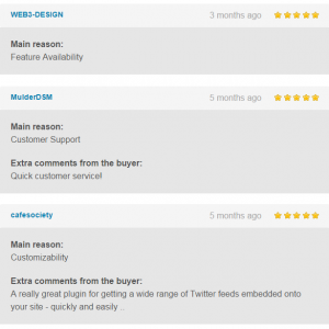 review-twitter-feed-pro