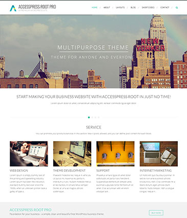 Best Minimalist WordPress Business Theme – AccessPress Root Pro