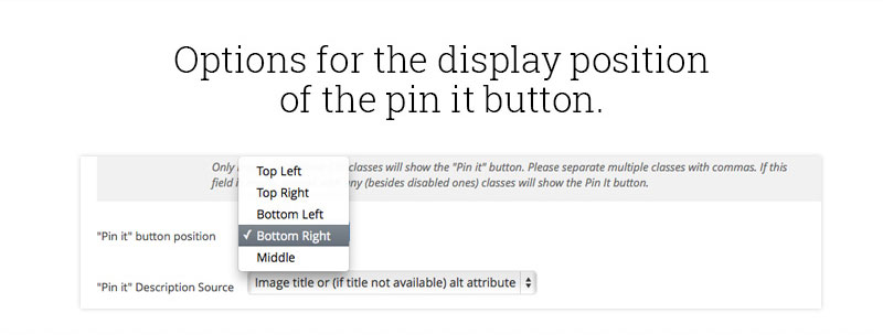 display-position-of-the-pin-it-button