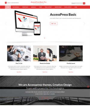 AccessPress Basic Pro WP Theme