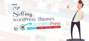 top selling themes for wordpress