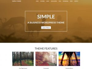 Simple Lite - Free WordPress Business Theme