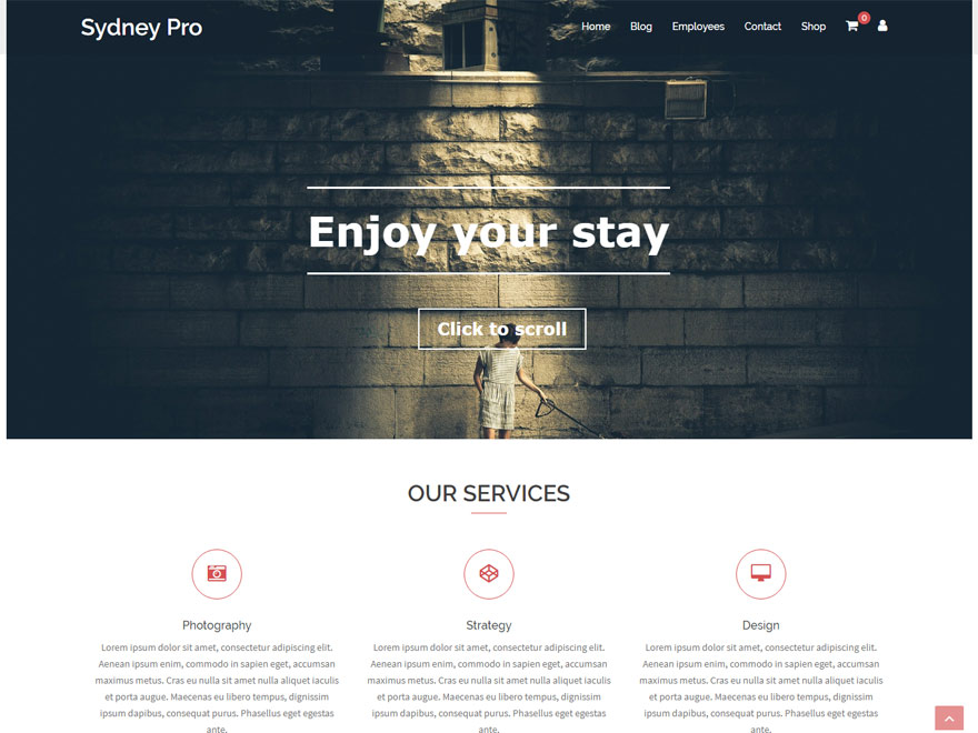 Sydney Pro - Best Responsive One Page WordPress Themes