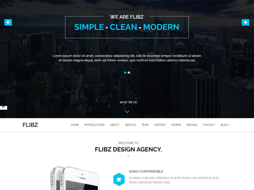 Flibz - Best Responsive One Page WordPress Themes
