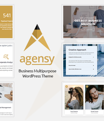 Business WordPress Theme – Agensy