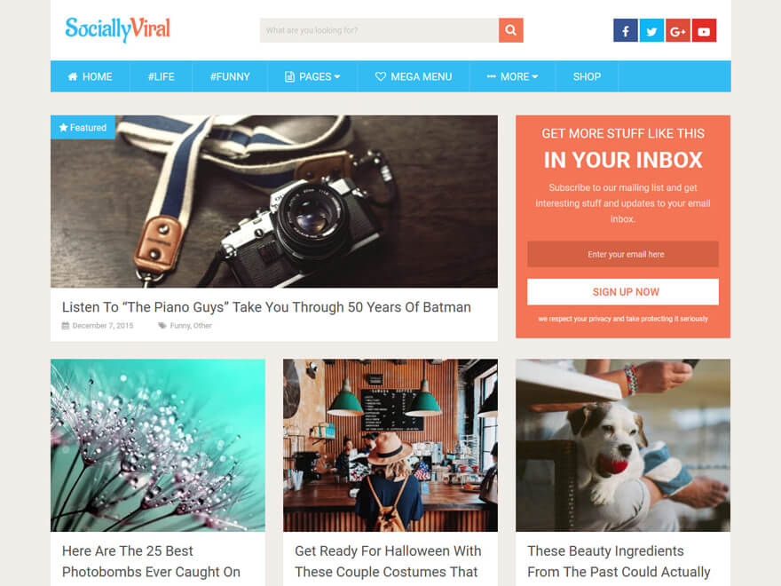 Socially Viral-Fastest Loading WordPress Themes
