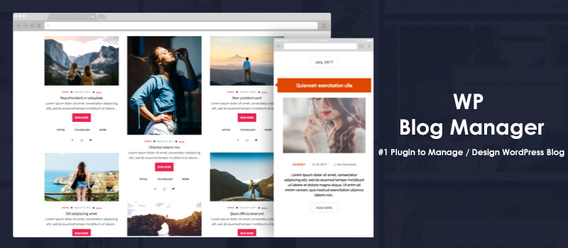 Best Plugin to Manage and Design WordPress Blogs - WP Blog