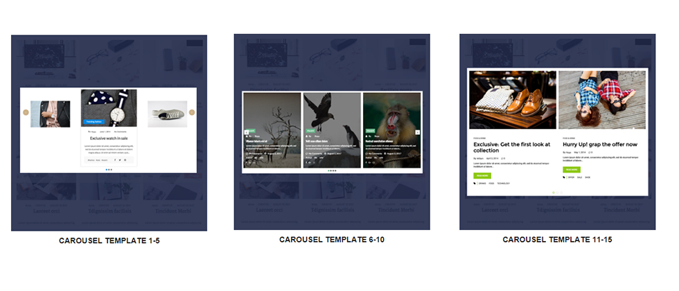 wp blog manager caraousel layout