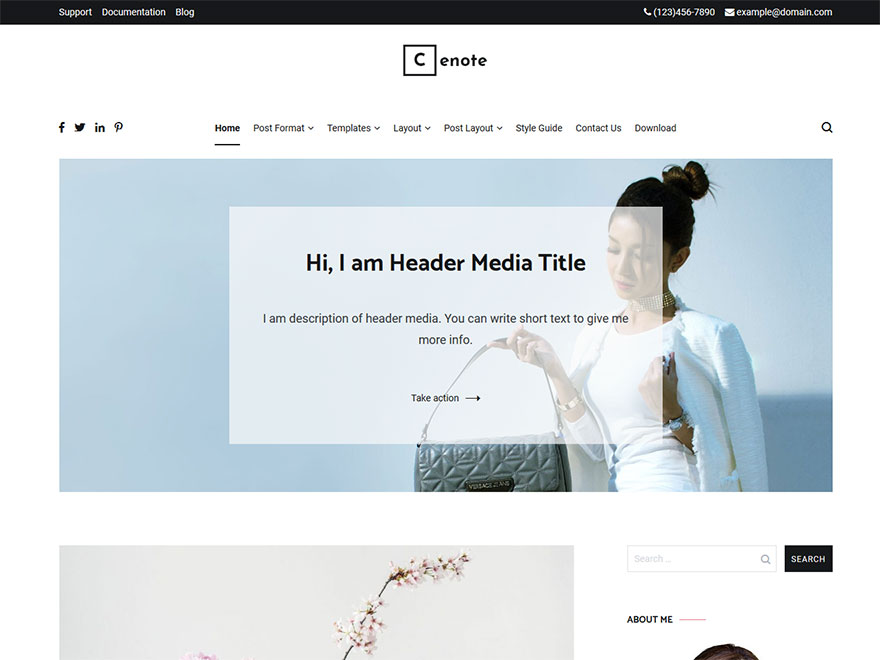 Cenote - Most Popular WordPress Blog Themes and Templates (Free)