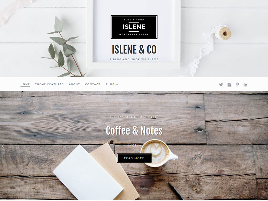 Islene - Most Popular WordPress Blog Themes and Templates (Free)