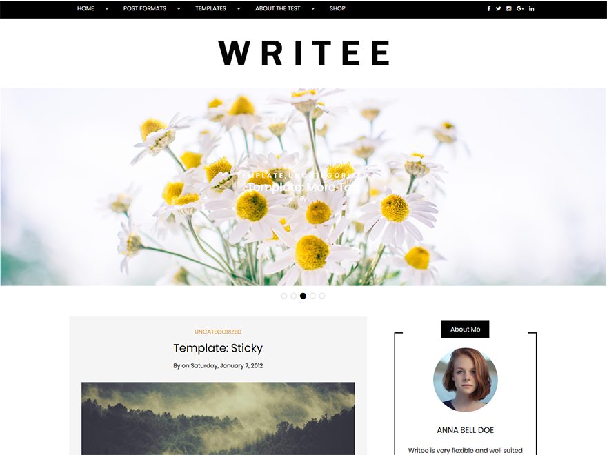Writee - Most Popular WordPress Blog Themes and Templates (Free)