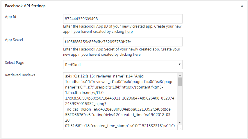 WP FB Review Showcase: API Settings