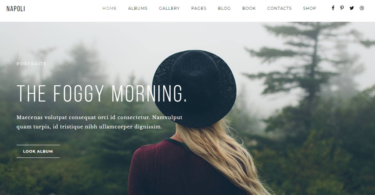 Napoli - Best Premium Photography WordPress Themes