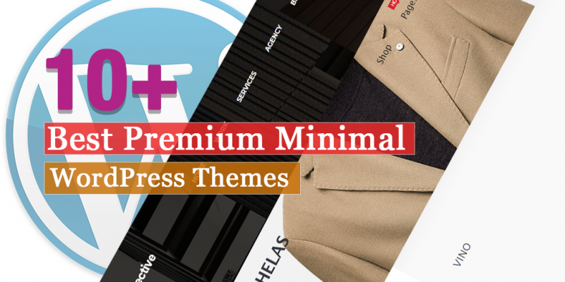 10+ Best Premium Minimal WordPress Themes