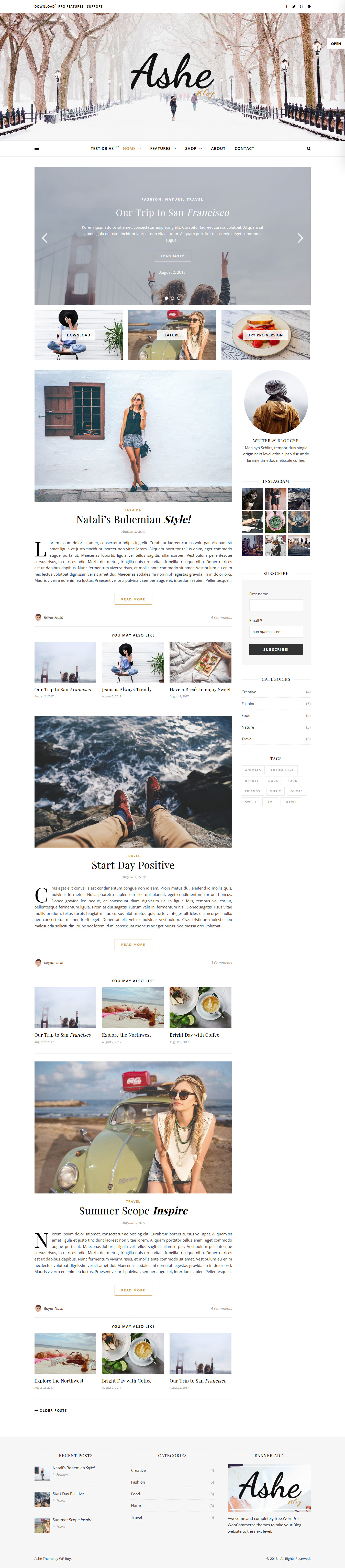 Ashe - Best Free Fullscreen WordPress Theme