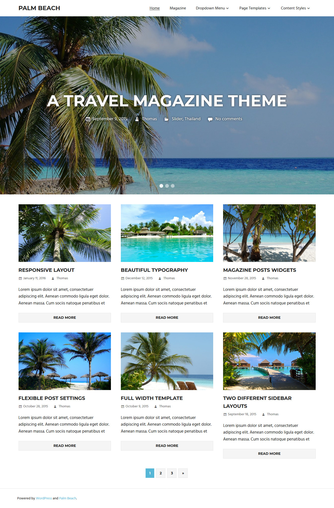 Palm Beach - Best Free Fullscreen WordPress Theme