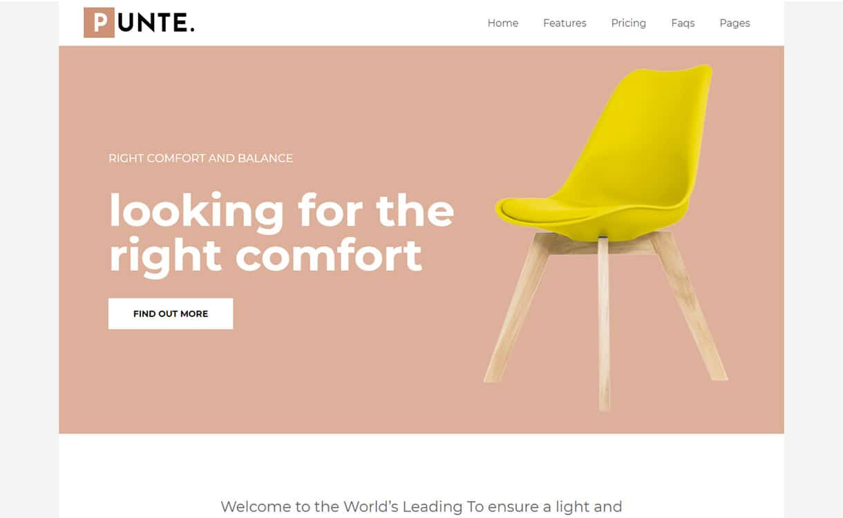 One-Product-Product-Showcase-Template-Punte