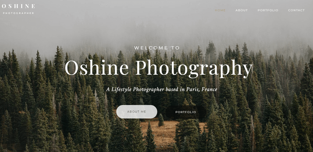 Oshine - Best Premium Photography WordPress Themes