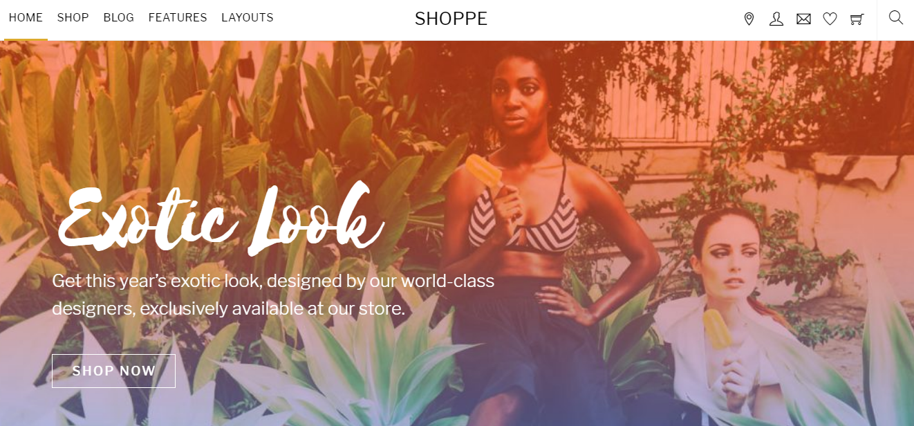 shoppe - Best WordPress eCommerce Theme