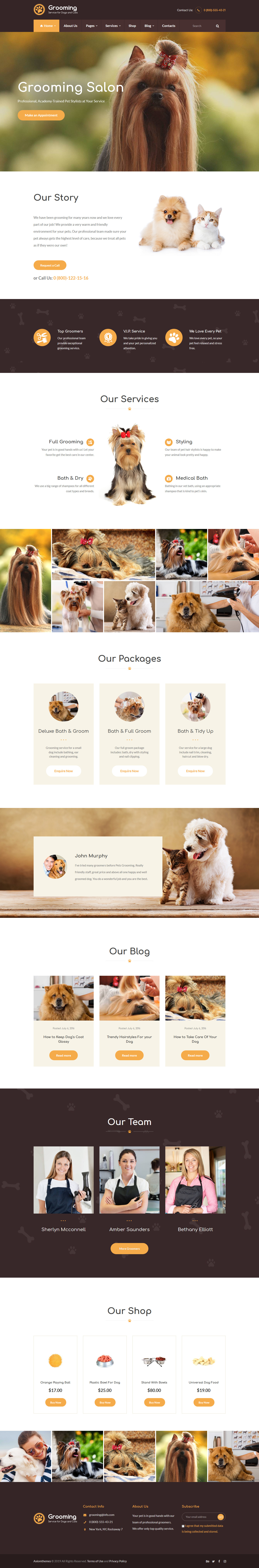 Pet Grooming - Best Premium Animal and Pet WordPress Theme