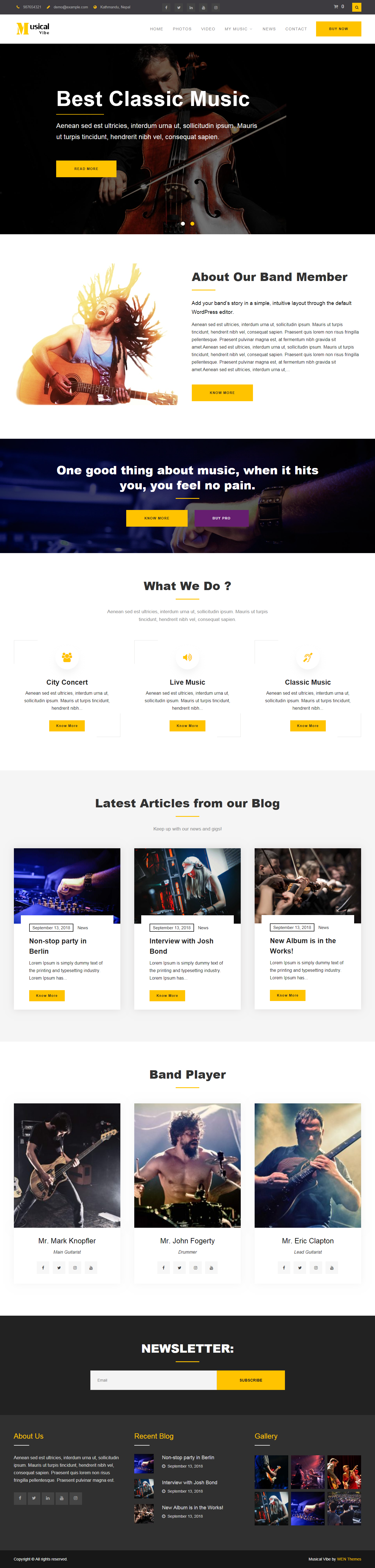 10+ Best Free Video and Music WordPress Themes - AccessPress Themes