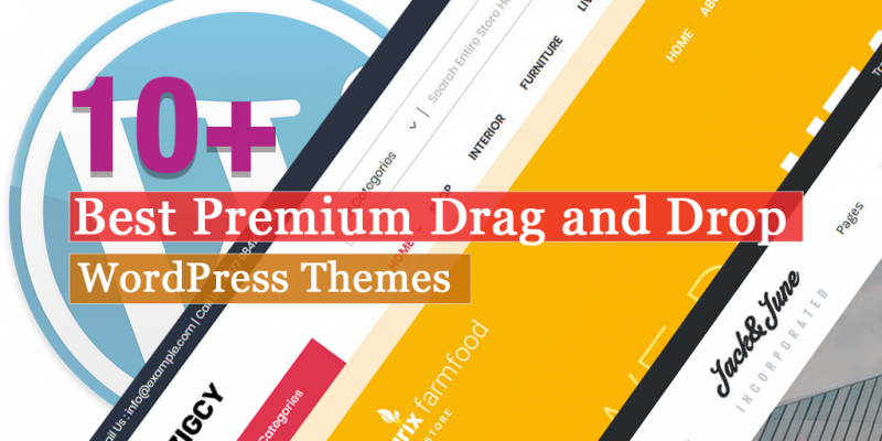 10+ Best Premium Drag and Drop WordPress Themes