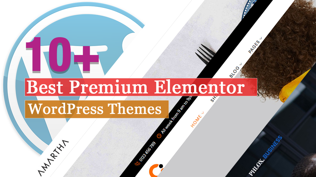 Best Premium Elementor WordPress Themes