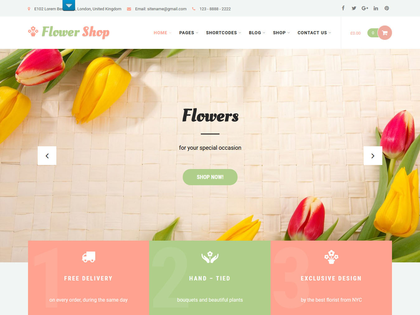 Flower Shop - Best Free WordPress WooCommerce Theme