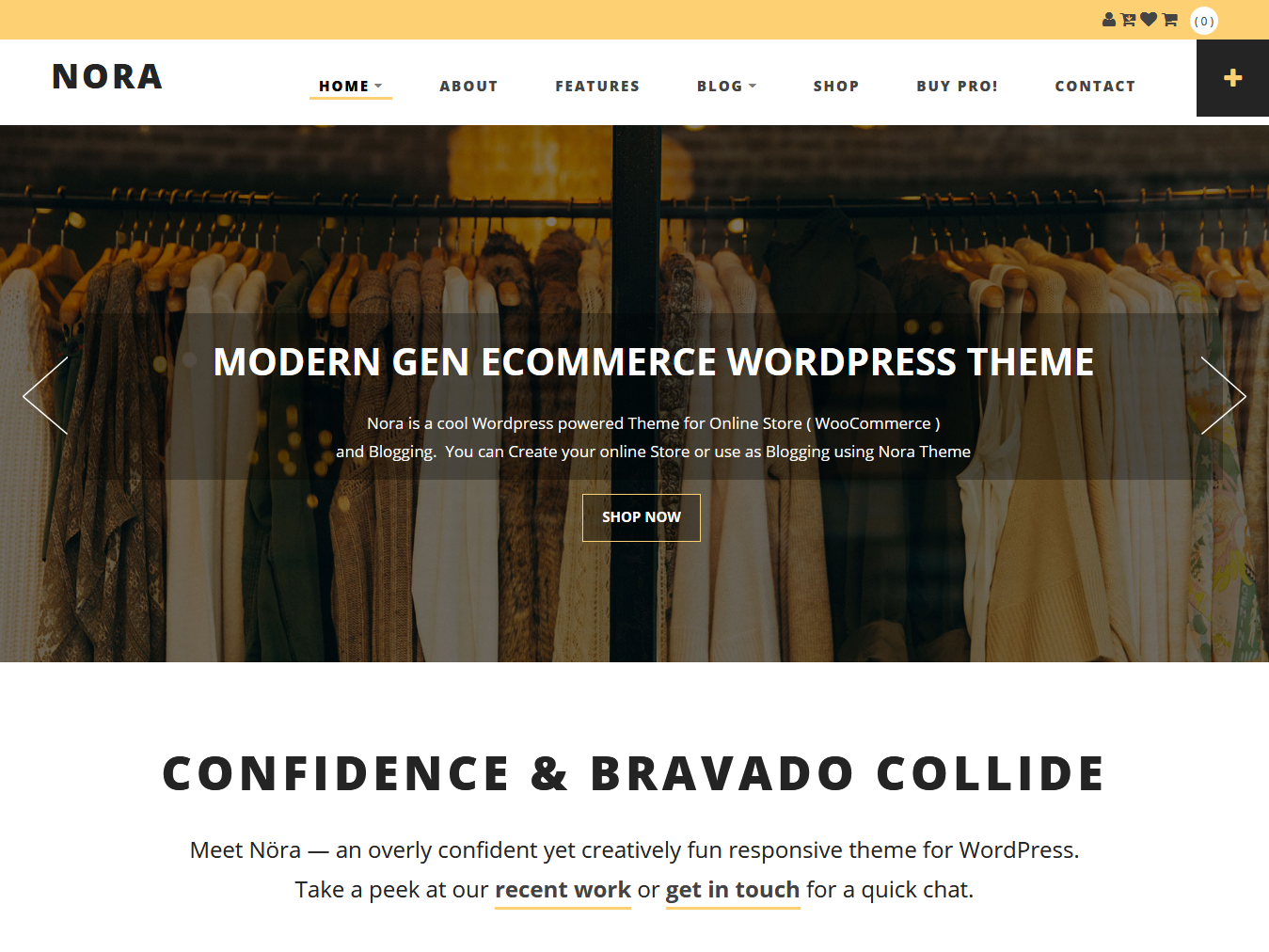 Nora - Best Free WordPress WooCommerce Theme