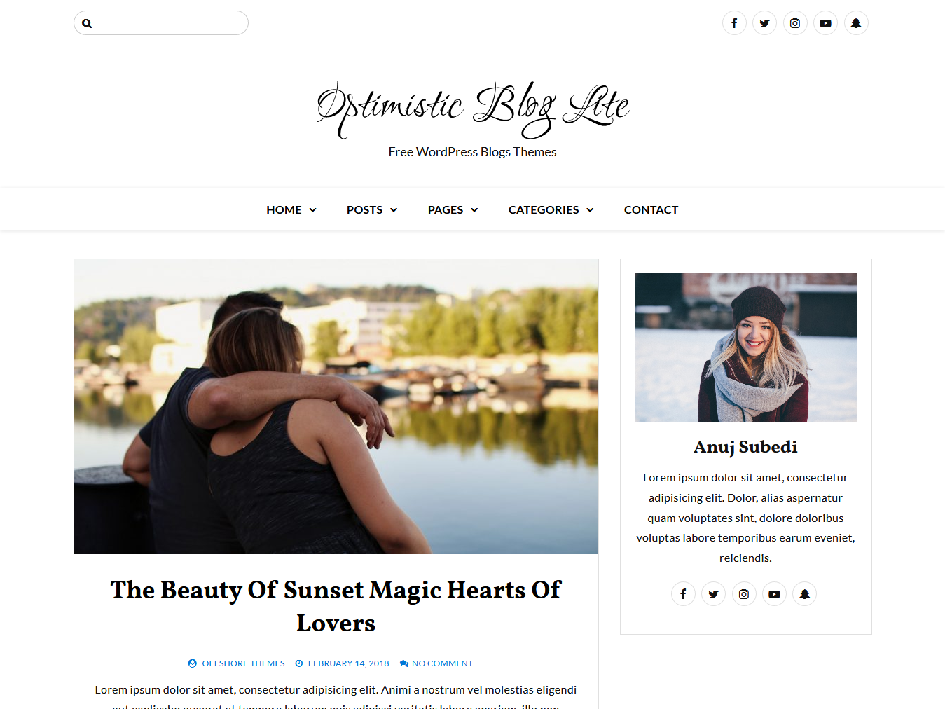 99 Best Free WordPress Blog Themes 2019 - AccessPress Themes