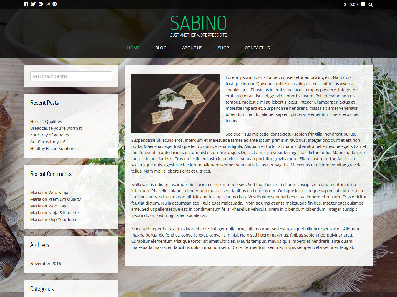 Sabino - Best Free WordPress WooCommerce Theme