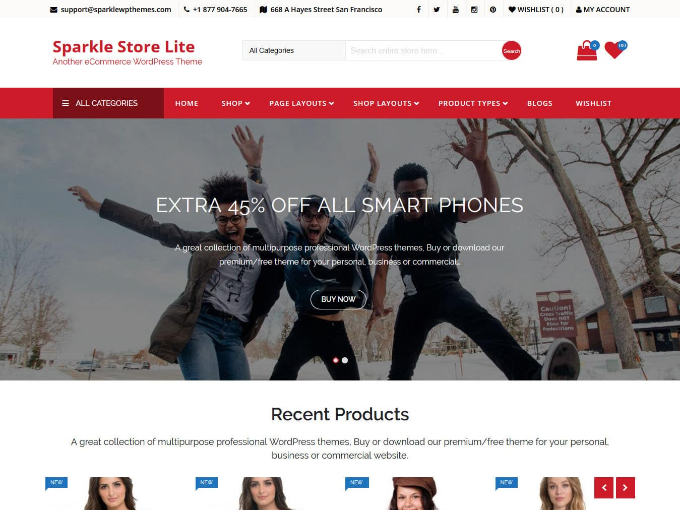 Sparkle Store Lite - Best Free WordPress WooCommerce Theme
