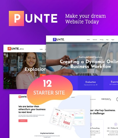 Multipurpose WordPress Theme – Punte