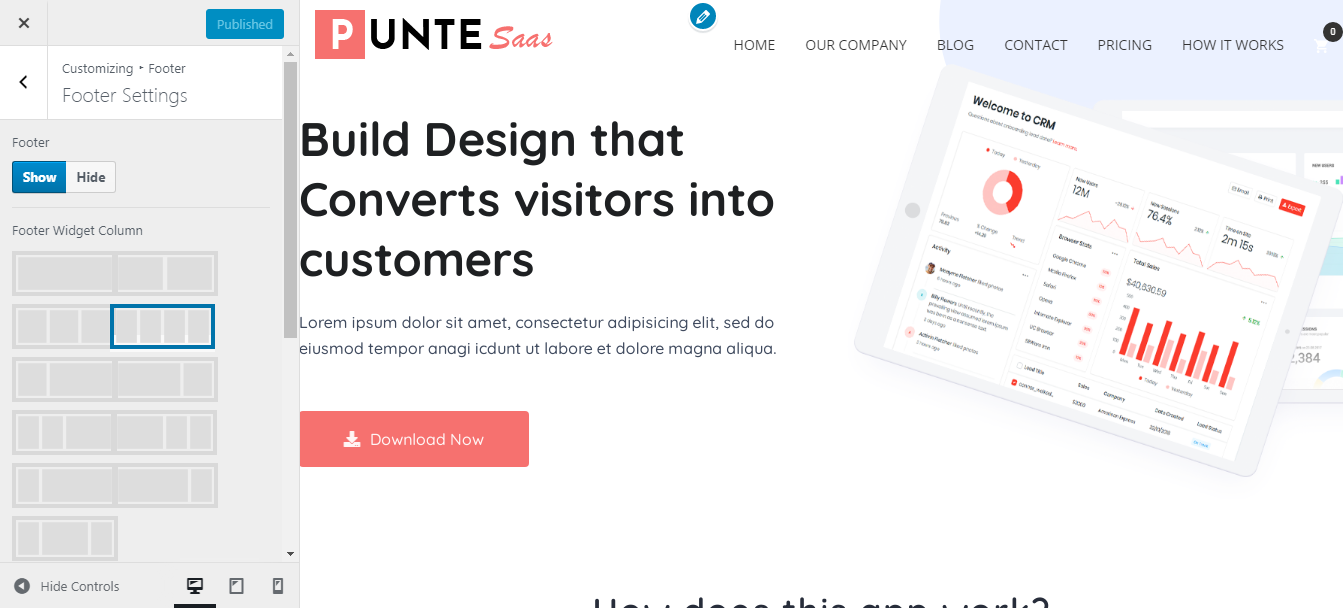 Customize Punte Footer
