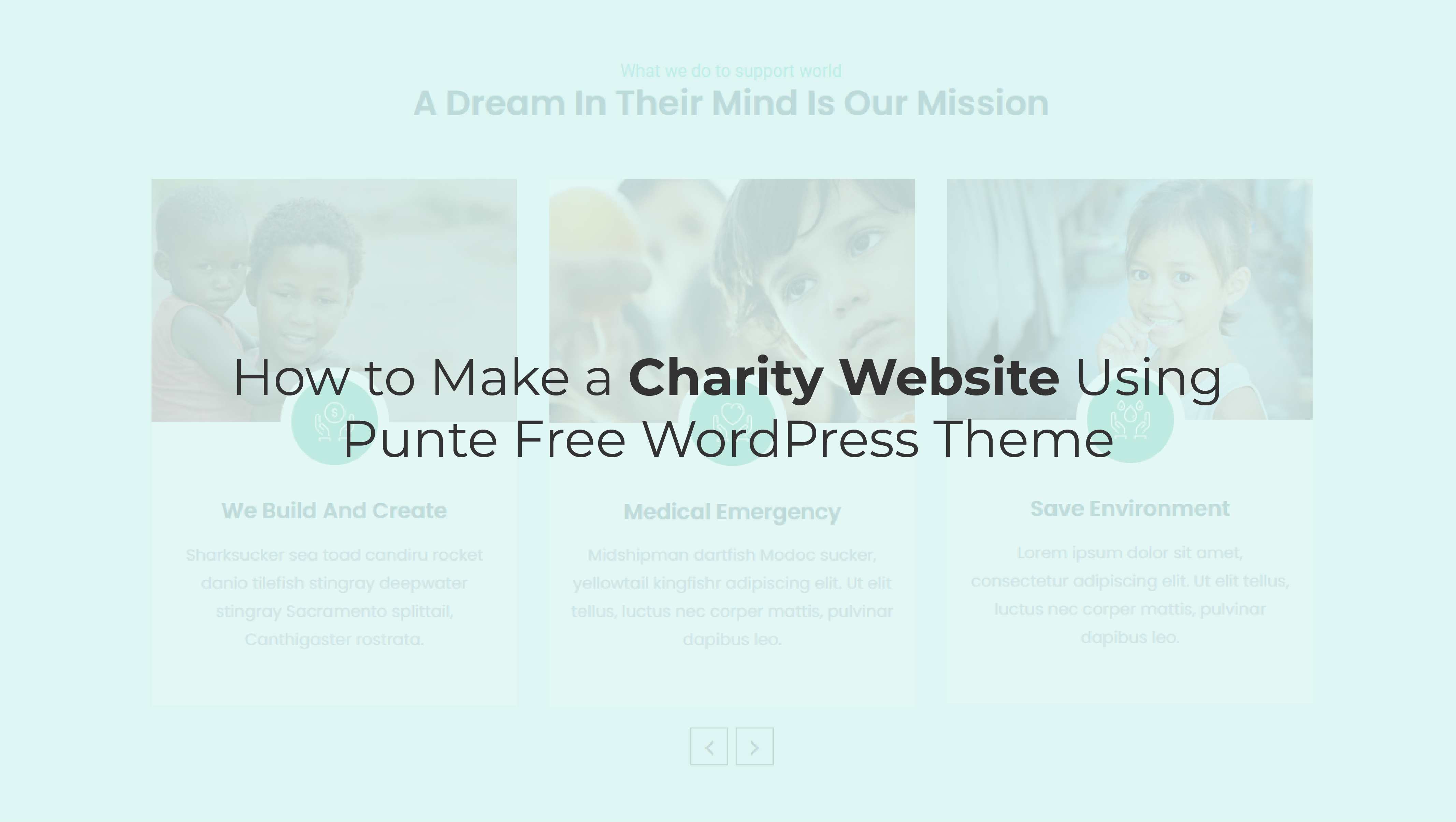 How to Create a Charity Website using Punte Free WordPress Theme