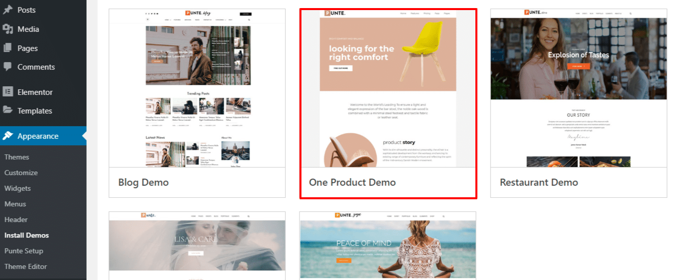 Make a Single Product Launch Sale Website Using Punte WordPress Theme