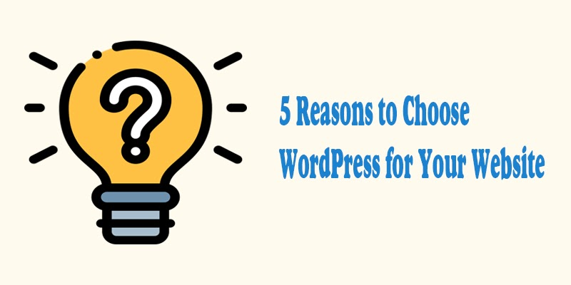 5 Whys to Choose WordPress for Your Website